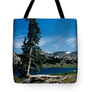 Lone Tree At Pass Tote Bag