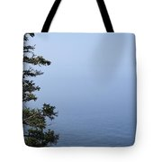 Lone Tree By The Water In Acadia National Park Tote Bag