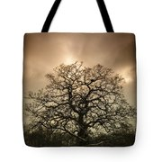 Lone Tree Tote Bag by Amanda Elwell