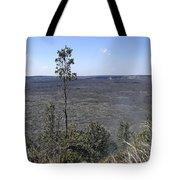Lone Tree Kilauea Crater Tote Bag