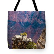 Lone Tree On Outcrop Grand Canyon Tote Bag