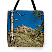 Lone Tree On The Mountain Tote Bag