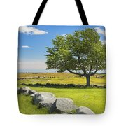 Lone Tree With Blue Sky In Blueberry Field Maine Tote Bag