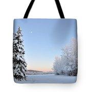 Lone Winter Spruce - Alaska Tote Bag