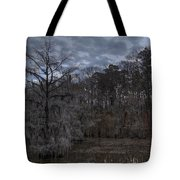 Lonely Bald Cypress Tote Bag