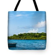 Lonely Boat Tote Bag by Luis Alvarenga