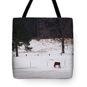 Lonely Horse Tote Bag