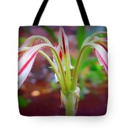 Lonely Lilly Tote Bag