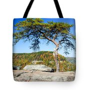 Lonely Lonesome Pine Tote Bag