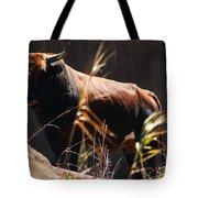 Lonesome Bull Tote Bag
