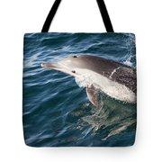 Long-beaked Common Dolphin Porpoising Tote Bag