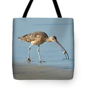 Long-billed Curlew Catching Crab Tote Bag