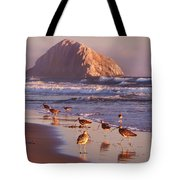 Long Billed Curlew - Morro Rock Tote Bag