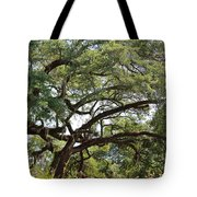 Long Branches Tote Bag