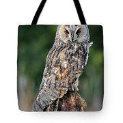 Long-eared Owl 4 Tote Bag