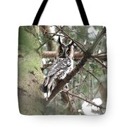 Long Eared Owl At Attention Tote Bag