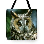 Long-eared Owl Up Close Tote Bag