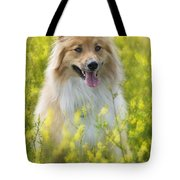Long Haired Mixed Breed Tote Bag