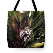 Long Leaf Explosion Tote Bag