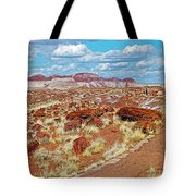 Long Logs Trail In Rainbow Forest In Petrified Forest National Park-arizona  Tote Bag