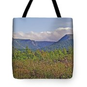Long Range Mountains In Western Nl Tote Bag
