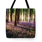 Long Shadows In Bluebell Woods Tote Bag
