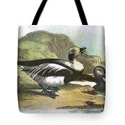 Long Tailed Duck Tote Bag