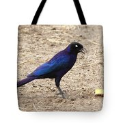 Long Tailed Glossy Starling  Tote Bag