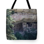 Long View Of Spruce Tree House Tote Bag