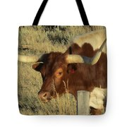 Longhorn # 2 Tote Bag