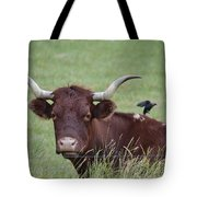 Longhorn And Friend Tote Bag
