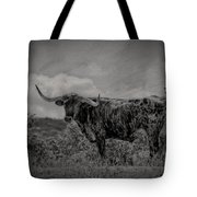 Longhorn Of Bandera Tote Bag
