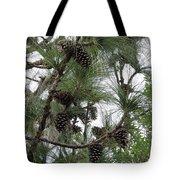 Longleaf Pine Cones Tote Bag