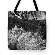 Longs Peak 14256 Ft Tote Bag