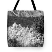 Longs Peak Autumn Scenic Bw View Tote Bag