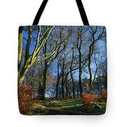 Longshaw Woods Tote Bag