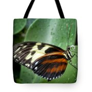 Longwing Butterfly Tote Bag
