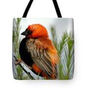 Lonley Bird Tote Bag