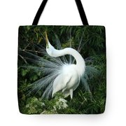 Look At Me Tote Bag by Sabrina L Ryan