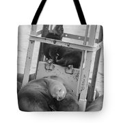 Look At The One In The Middle Black And White Tote Bag