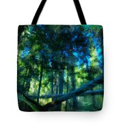 Look Into The Reflection Tote Bag