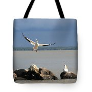 Look Ma - I Can Fly Tote Bag