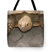 Look Out Here I Come Tote Bag