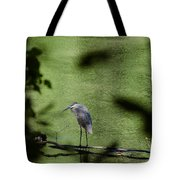 Look Through The Trees Tote Bag