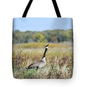 Look Up There Tote Bag