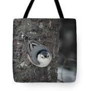 Lookin' For A Treat Tote Bag