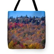 Looking At The Top Of Bald Mountain Tote Bag