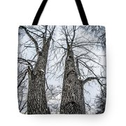 Looking At Tree Tops After A Winter Snow Storm Tote Bag
