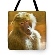 Looking At You. Tote Bag
