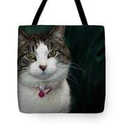 Looking At You Looking At Me Tote Bag